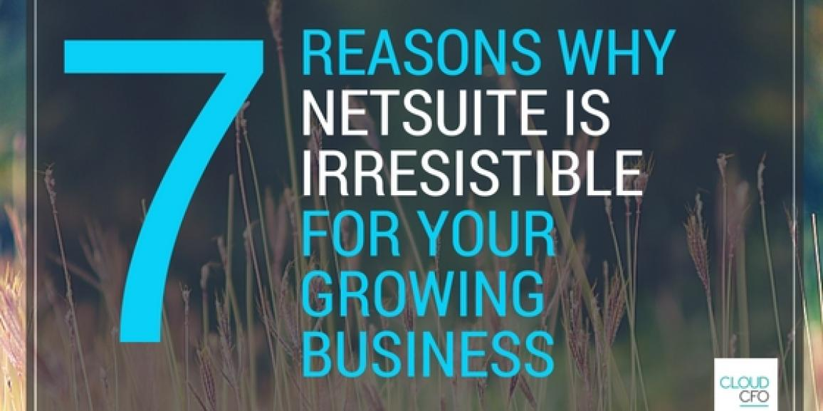 7 Reasons Why NetSuite is an Irresistible Software Option For Your Growing Business